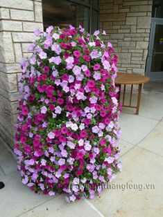 How to Make a Flower Tower -- Basically, it's a ring of galvanized fencing lined with landscape fabric, then filled with potting soil. The flowers were planted through slits in the landscape fabric. This is a pretty easy do-it-yourself project! Outdoor Planters, Outdoor Gardens, Fall Planters, Container Plants, Container Gardening, Vegetable Gardening, Succulent Containers, Container Flowers, Organic Gardening