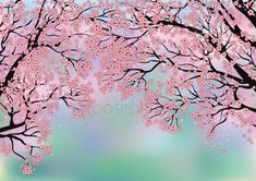 Cadre Design, Clip Art, Bullet Journal, Outdoor, Cherry Blossom, Flowers, Vector Graphics, Cherry, Outdoors