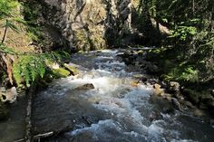 #hiking  Sinclair Falls in Kootenay National Park, BC, Canada