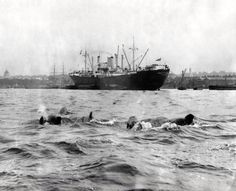 Dolphins off Island Gardens Old London, East London, Rowing Club, Isle Of Dogs, London Pictures, Past Life, Newcastle, Island, Dolphins