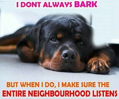 .I don't always bark, but when I do...