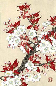 Kawarazaki Shodo Sakura Cherry Blossoms Japanese Woodblock Print | eBay