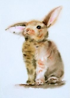 Sad rabbit / Adorable Bunny by stokrotas on DeviantArt