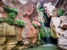Elves' Chasm - Grand Canyon