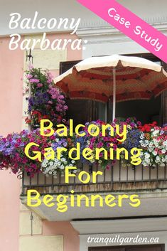 Balcony Barbara Balcony Gardening For Beginners Case Study Balcony Barbara Balco. - Balcony Barbara Balcony Gardening For Beginners Case Study Balcony Barbara Balco… – Balcony Ba - Diy Garden, Garden Boxes, Garden Landscaping, Landscaping Ideas, Patio Ideas, Garden Art, Gardening For Beginners, Gardening Tips, Balcony Gardening