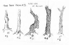 pinepractice2.jpg (3390×2252)