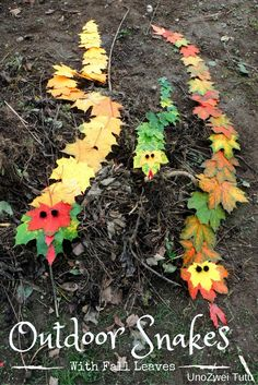 Make an adorable snake family outdoors with fall leaves. This snake craft is perfect for toddlers and preschoolers.