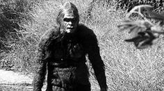10 Legendary Monsters of Europe | Fear Liath (full name Am Fear Liath Mòr) is the name given to a ten-foot-tall humanoid creature that haunts the summit of Ben MacDhui, the second-highest mountain in Scotland. It is also called The Big Grey Man of Ben MacDhui. The creature causes an uncontrollable feeling of dread or panic among hikers who never see it, but feel its presence...
