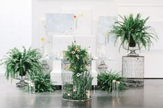 Modern Wedding Inspiration with Lots of Ferns Modern Wedding Inspiration with Lots of Ferns Fern Wedding, Botanical Wedding, Wedding Stage, Floral Wedding, Wedding Ceremony, Wedding Flowers, Lace Wedding, Wedding Trends, Wedding Designs