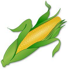 ear corn illustrations and clipart 365 ear corn royalty free rh pinterest com ear of corn clipart black and white Turkey Clip Art