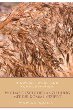 Hinweise, Wege und Kommunikation
