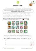 Auf diesem kostenlosen Arbeitsblatt lernen die Schüler einiges über Fette und sollen verschiedene Aufgaben zum Thema Fette bearbeiten. Jetzt downloaden!