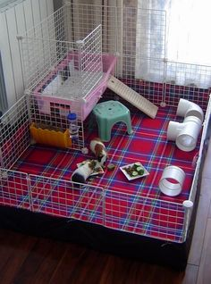 Buy The Right Size Guinea Pig Cage. Photo by maskarade Purchasing a guinea pig cage in a pet shop is unfortunately a good way to ensure that it is in fact too small for your pet's needs. Diy Guinea Pig Cage, Guinea Pig House, Pet Guinea Pigs, Guinea Pig Care, Hamster House, Hamsters, Cavy Cage, Pet Cage, Bunny Cages