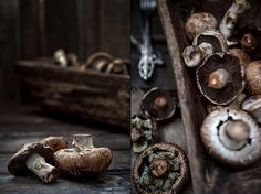 Dark Food Photography, Mushroom on wooden
