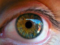 Logran células del ojo por primera vez gracias a la impresión 3D