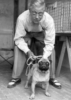 A Man And His Pug. The Duke of Windsor.