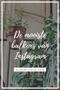 #balkongoals: de mooiste balkons van Instagram | Bloomifique | balkon, dakterras, terras, bloemen, plant, planten, kamerplant, kamerplanten Cheek By Jowl, Balcony Lighting, Young Family, Rooftop Terrace, Types Of Houses, Balconies, Being A Landlord, Houseplants, Most Beautiful