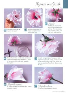Todo Flores de Porcelana Fria: Flores Porcelana fria: Rosa Peonia Paso a paso Paper Flowers Diy, Sugar Flowers, Flower Crafts, Eatable Flowers, Fondant Flower Cake, Biscuit, Valentines Flowers, Gum Paste Flowers, Polymer Clay Flowers