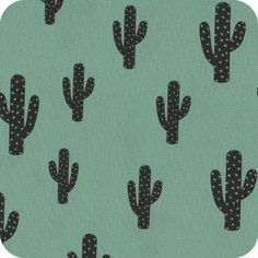 Cactus menthe glacé