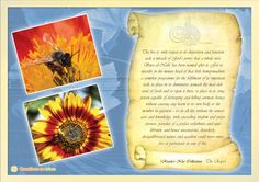 The bee is, with respect to its disposition and function, such a miracle of God's power that a whole sura, Sura al-Nahl, has been named after it.   (Risale-i Nur Collection - The Rays)    www.questionsonislam.com