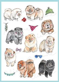 598701e1208 16 elements of hand drawn watercolor Chow Chow images. This super cute  animal collection is