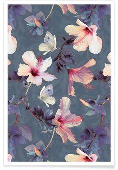 Butterflies & Hibiscus Flowers als Premium Poster von Micklyn Le Feuvre | JUNIQE