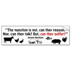 The question is not, can they reason?...