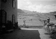 1922. Kilátás Schmidt Miksa kiscelli kastélya (ma Kiscelli Múzeum) északi oldalától nyugat, a Mátyás-hegy felé, André Kertész felvétele.