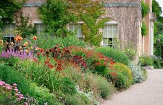 Killerton House and Borders    Herbaceous borders at their summer best, leading up Killerton House, Devon. It is a National Trust property