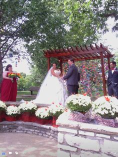Origami crane wedding at Bee Tree Park in St. Louis. | Food for ...