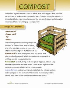Make Your Own Compost Worksheet
