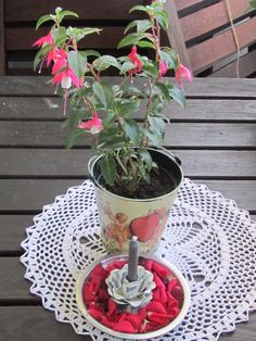 LoVe&ENJOY HOME. Decorate&GARDEN.  MySTYLE. Summer Flower....