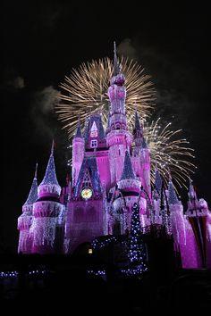 Magic Kingdom - Orlando, FL