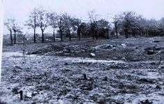 Begravelsespladsen i Ryvangen med henrettede modstandsfolk - maj 1945. De sidst henrettede var lå ikke særlig dybt begravet. Nogle grave havde nummerede pæle - andre var begravet med en seddel med et nødtørftig data. I dag er det stedet lavet til mindelund.