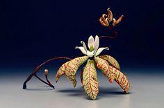 Michael Sherrill porcelain