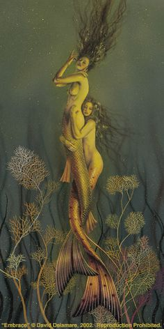 Embrace: a mermaid painting by David Delamare. Magical Creatures, Fantasy Creatures, Sea Creatures, Mermaid Fairy, Mermaid Tale, Fantasy Mermaids, Mermaids And Mermen, Drawn Art, Mermaid Pictures