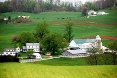 Amish - This is the amazing scenes you will see farm after farm!