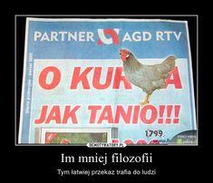 Im mniej filozofii Polish Memes, Quality Memes, Fnaf, The Funny, I Laughed, Funny Memes, Humor, History, Amigurumi