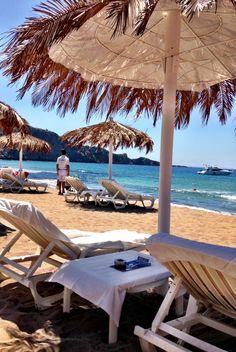 Club Tropicana Ibiza