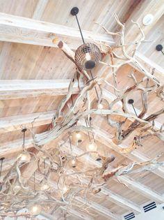driftwood+lights