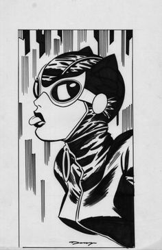Darwyn Cooke Catwoman unused cover, in Fons van Erp's Great in animation, Timm, Cooke Comic Art Gallery Room Comic Book Artists, Comic Book Heroes, Comic Artist, Comic Books, Batman Girl, Catwoman Selina Kyle, Marvel Cosplay, Wow Art, Cool Animations