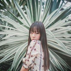 @dreaming_garden_님의 이 Instagram 사진 보기 • 좋아요 245개