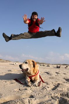 Ready to board the Jolly Pirates ! Jumping For Joy, High Jump, Leap Of Faith, Free Photography, Live Free, Its A Wonderful Life, Dog Friends, Just Go, Dog Love