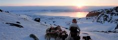 Dog sled expedition Greenland: Kangerlussuaq to Sisimiut | World of Greenland - Arctic Circle