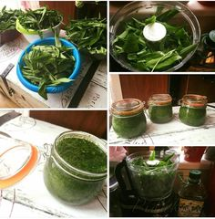 Obrázek z Recept - Pesto z medvědího česneku by Romča Korn, Chutney, Pesto, Spinach, Food And Drink, Vegetables, Kitchen Tips, Dressings, Detail