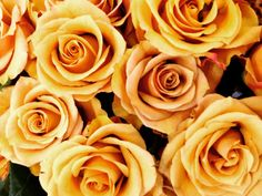Roses and Mother's Day - The perfect Combo Etsy Shop SmartBlondes Handmade@Amazon/ Shop Smart Blondes