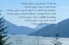 L Miss You, Hes Gone, Twin Souls, Knight In Shining Armor, Cuddle Buddy, Love Stars, Forever Love, Cuddles, Grief