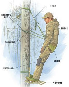 A new generation of highly mobile bowhunters is embracing the lightweight comfort and versatility of tree saddles. Here's everything you need to know to get started in tree saddle hunting. Whitetail Deer Hunting, Deer Hunting Tips, Deer Hunting Blinds, Coyote Hunting, Pheasant Hunting, Archery Hunting, Hunting Stands, Deer Stands, Deer Camp