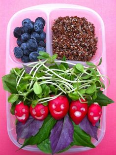 Mixed spinach, sunflower sprouts and radish face salad
