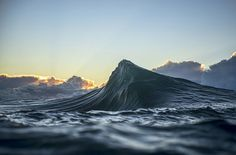 Ray_Collins1.png (719×473)